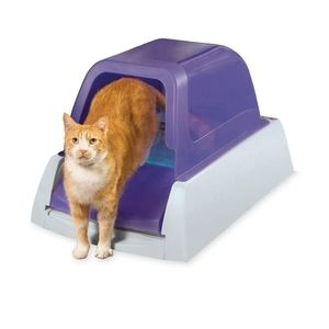 Gently used Pet Safe self cleaning litter box